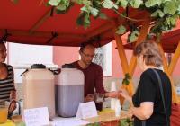 Broumovské vinobraní / Odpoledne s burčákem