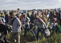 Diskuse na téma: Situace uprchlíků v maďarské politice