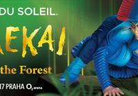 Varekai - Cirque du Soleil