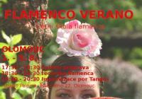 Flamenco verano