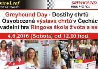 Dostihy chrtů a 1. Osvobozená výstava chrtů v Čechách, Greyhound Day