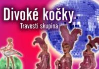 Divoké kočky - Travesti show