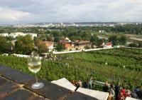 Vinobraní sv. Kláry