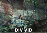 DIV VID-Adam Kašpar