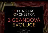 Cotatcha Orchestra v HaDivadle