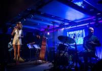 Koncert ArtCafé - Alita Moses Band (USA/CZ)
