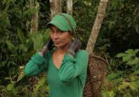 Duchovní život a šamanismus v Amazonii