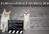 Mezinárodní výstava koček Praha Slávia