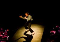 Divadlo Vizita — Červí eden