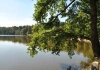 Konopišťský rybník