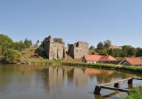 Starozámecký rybník, Borotín