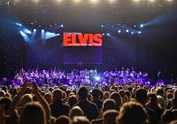 Elvis - Live on Screen