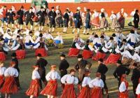 Úloha kulturních festivalů u Estonců v exilu