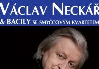 Sedmihorské léto: Václav Neckář & Bacily