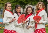 Plzeňský festival vína 2017 - podzim