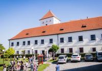Vinařská slavnost otevřených sklepů v Čejkovicích