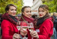 Plzeňský festival vína 2017 - jaro
