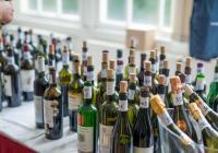 Svátek vína na soutoku Labe a Orlice