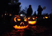 Halloween v botanické