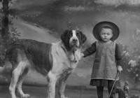 "Výstava ""Canis pictus / Pes na historické fotografii 1839–1918"""
