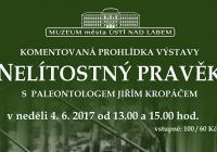 """Výstavou """"Nelítostný pravěk"""" s Jiřím Kropáčem"""