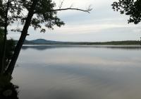 Břehyňský rybník, Břehyně