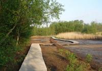 Národní přírodní rezervace Soos, Nový Drahov