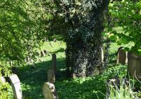 Židovský hřbitov Zámostí