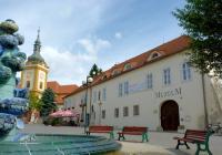 Muzeum Šlapanice, Šlapanice