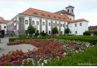 Za českolipskými kostely