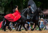 Koně pomáhají 2018 - Jezdecký muzikál