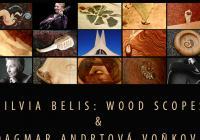 Výstava Silvie Belis: Wood Scopes