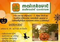 Dýňování a výstava ovoce a zeleniny - Břeclav