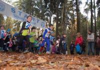 Lesní běh Pintovkou - Tábor