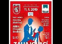 Ples města Děčín