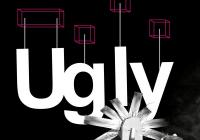 INPUT #5 Ugly