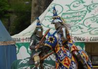 Bitva Nižbor