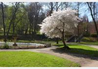 Trutnov - procházka Městským parkem