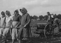 Z fotoarchivu NZM – Lidé na poli