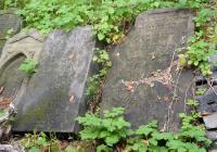 Starý židovský hřbitov, Česká Lípa
