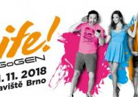 Festival Life - Bvv Brno