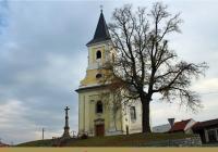 Přednáška | Příběhy stromů Republiky Zlínského kraje