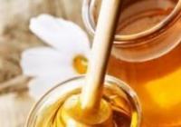 Chvála medu - Hrad Hauenštejn
