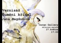 Vernisáž Šumění křídel - Jana Magdoňová