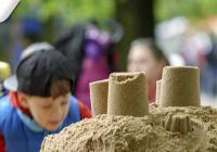 Cipískoviště v Písku