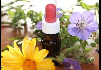 Zima a Homeopatie?