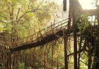 Interaktivní výstava Mosty