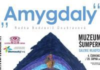 Amygdaly