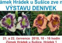 Výstava denivek - Zámek Hrádek u Sušic