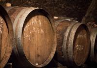Košt vín z Lovosic a okolí ve sklepě Pfannschmidtovy vily